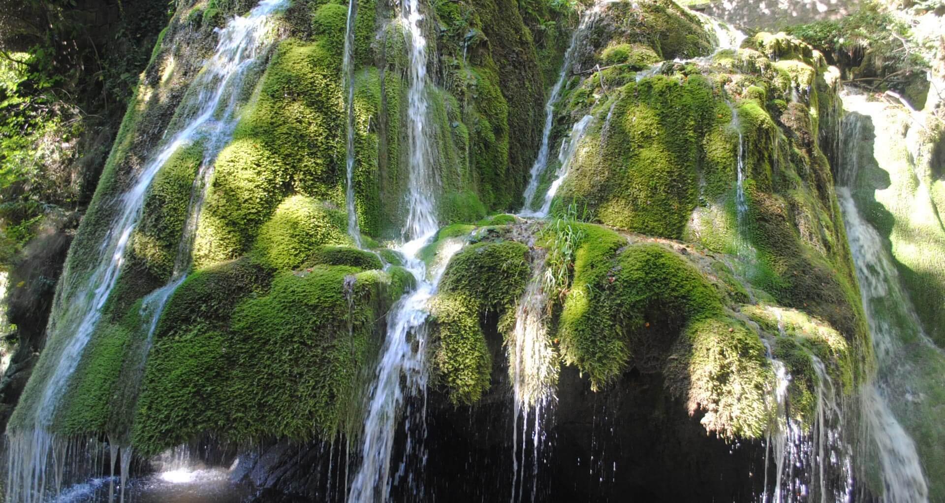 Oameni multumiti - excursii in natura, evenimente culturale
